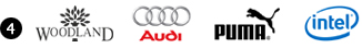 Combination Based Logos : Woodland, Audi, Puma & Intel